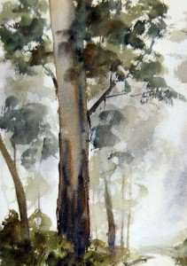 Watercolor Painting foreground gum tree in rain fog and mist