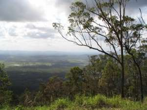 From Tamborine Mountain,Qld watercolor landscape painting reference photo